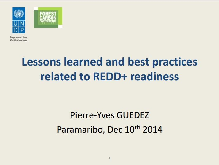 REDD+ and lessons learned PY 2014.JPG